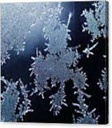 Close Up Of Ice Crystals Canvas Print