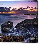 Coastal Landscape Canvas Print