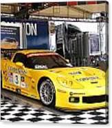 Corvette Racing C5r Canvas Print