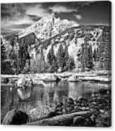 Cottonwood Creek Canvas Print