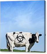 Cow And Biohazard Sign, Artwork Canvas Print