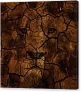 Cracks Of A King Canvas Print
