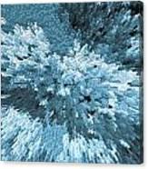 Crystal Flowers Canvas Print