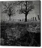 Dark Roost Canvas Print