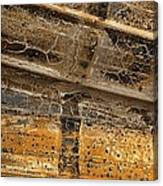 Detail Of Burnt Building Canvas Print
