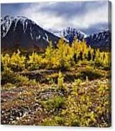 Fall Colours And Auriol Range, Kluane Canvas Print