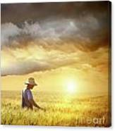 Farmer Checking His Crop Of Wheat  Canvas Print