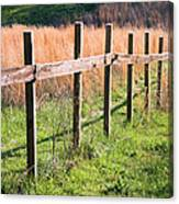Fence Perspective Canvas Print