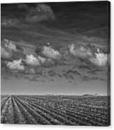 Field Furrows And Clouds In South East Texas Canvas Print