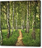 Find Your Way Back Home Canvas Print