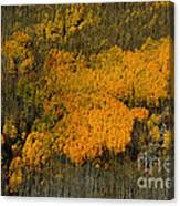 Fine Art Of Nature Canvas Print
