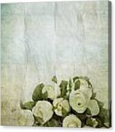 Floral Pattern On Old Paper Canvas Print