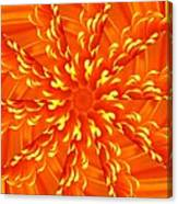 Floral Sunrise Canvas Print