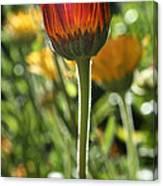 Floral Torch Canvas Print