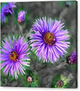Flower Patterns Canvas Print