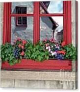 Flower Pots ...... 13 Canvas Print