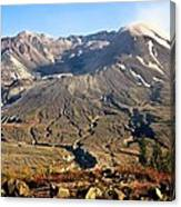 Flowers On Mount St. Helens Canvas Print
