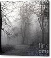 Fog In Forest Canvas Print