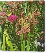 Garden Flowers  Canvas Print