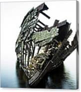 Harvey Neelon Shipwreck So They Say... Canvas Print
