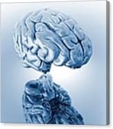 Human Brain, Artwork Canvas Print