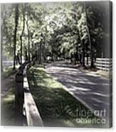 In My Dream The Road Less Traveled Canvas Print
