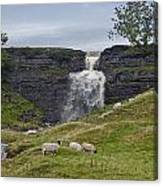 In The Yorkshire Dales Canvas Print