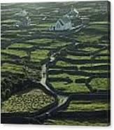 Inisheer, Aran Islands, Co Galway Canvas Print