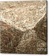 Iron-nickel Meteorite Canvas Print