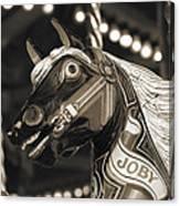 Joby The Carousel Horse Canvas Print