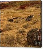 John Day Painted Hills Canvas Print