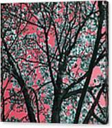 Kimono Pink Canvas Print