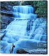 Lady Barron Falls Canvas Print