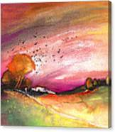 Late Afternoon 23 Canvas Print
