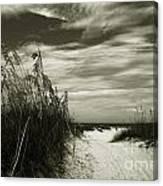 Let's Go To The Beach Canvas Print