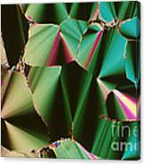 Liquid Crystalline Dna Canvas Print