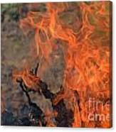 Log Fire And Flames Canvas Print