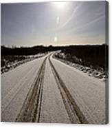 Logging Road In Winter Canvas Print