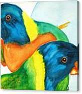 Lorakeet Pair Canvas Print