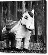 Lost Pony Canvas Print