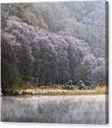 Lower Lake, Glendalough, County Canvas Print