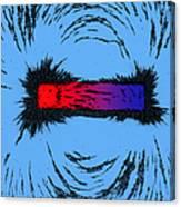 Magnetism Canvas Print