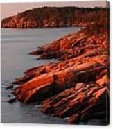 Maine Granite Coast Canvas Print