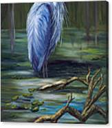 Marsh Master Canvas Print