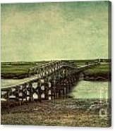 Marshland Canvas Print