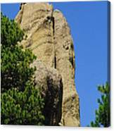 Mica Rock In The Black Hills Canvas Print