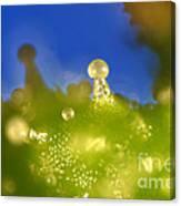 Microscopic View Of Cannabis Sativa Canvas Print
