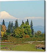 Mt. Adams In The Country Canvas Print
