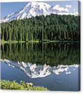 Mt Rainier Reflected In Lake Mt Rainier Canvas Print