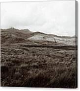 Mull Tidal Flats Canvas Print